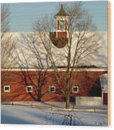 Winter Red Wood Print