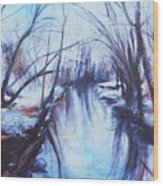 Winter Reflections Wood Print