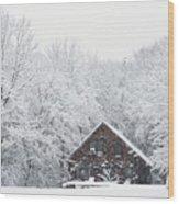 Winter Ride Snowy Pond Wood Print