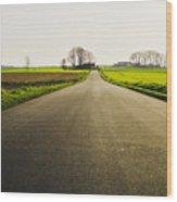 Winter Road Ground Level Wood Print