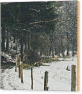 Winter Rural Pathway Wood Print
