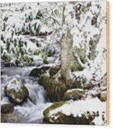 Winter Rushing Stream Wood Print