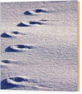Winter Sand Wood Print