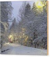 Winter Scene 5 Wood Print