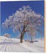 Winter Scene Genessee, Id Wood Print