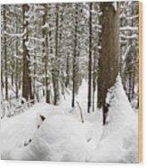 Winter Scene Print Wood Print