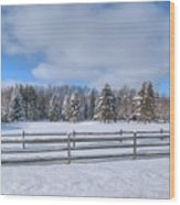 Winter Scenery 14589 Wood Print