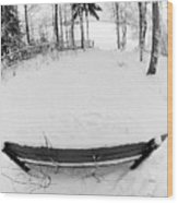Winter Seat 1 Wood Print