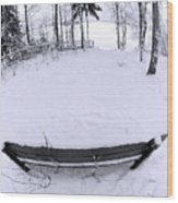 Winter Seat 2 Wood Print