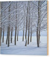 Winter Sentinels Wood Print