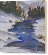 Winter Shades Wood Print