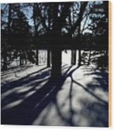 Winter Shadows 2 Wood Print
