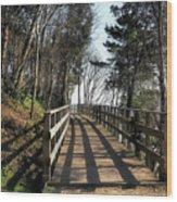 Winter Shadows At The Bridge Wood Print
