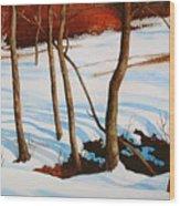 Winter Shadows Wood Print