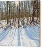 Winter Shadows Wood Print by Tim Fitzwater