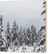 Winter Shangri-la Wood Print