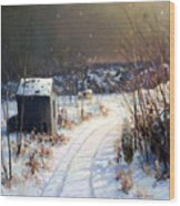Winter Sleep North On River Road Bucks County Wood Print