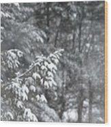 Winter Snow Wood Print