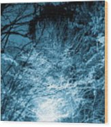 Winter Solstice Wood Print