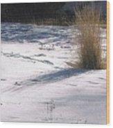 Winter Sparkle Wood Print