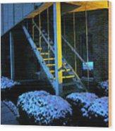 Winter Stairs Wood Print