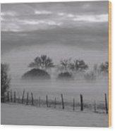 Winter Stillness Wood Print