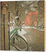 Winter Stockholm  Swiss  Wood Print