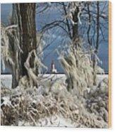 Winter Storm Ashley 2015 #2 Wood Print