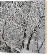 Winter Storm Skylar Wood Print