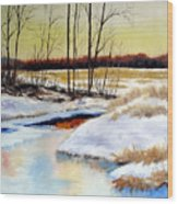 Winter Stream 1107 Wood Print