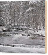 Winter Stream And Woods Wood Print