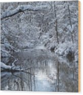 Winter Stream Wood Print