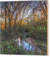 Winter Stream Sunset Wood Print