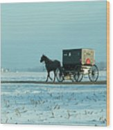 Winter Sun On Amish Buggy Wood Print