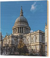 Winter Sun St Paul's Cathedral Wood Print