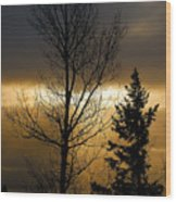 Winter Sunrise 2 Wood Print