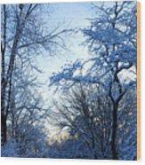 Winter Sunrise II Wood Print