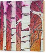 Winter Sunset Birch Wood Print