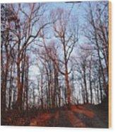 Winter Sunset In Georgia Mountains Wood Print
