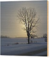 Winter Sunset In Lambton County Wood Print
