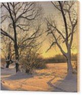 Winter Sunset Wood Print by Jaroslaw Grudzinski