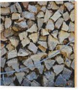Winter Survival Kit 3 Wood Print