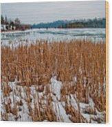 Winter Swamp Wood Print