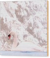 Winter Swan Wood Print
