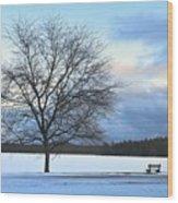 Winter Wood Print by Toshihide Takekoshi
