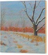 Winter Trail Carter Wood Print