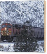 Winter Train Wood Print