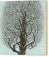 Winter Tree 2009 Wood Print
