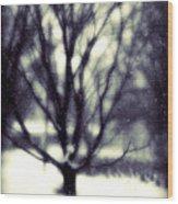Winter Tree 3 Wood Print