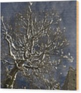 Winter Tree And Castle Wood Print